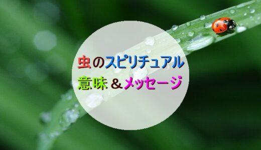 「虫」のスピリチュアル的な意味&メッセージ一覧!!【生物&状況】